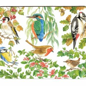 Birds of Britain Placemats Box of 4 (M46)