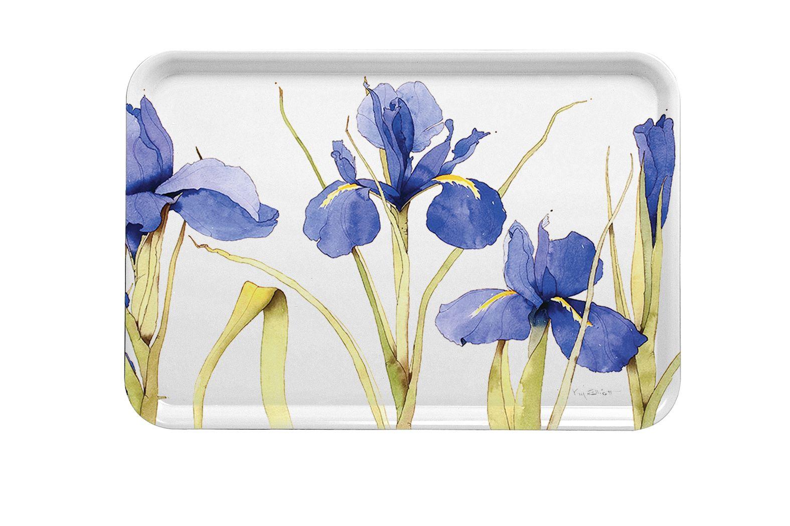 M7 Blue Iris Large Tray