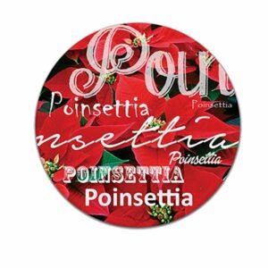 M8 Poinsettia Pot Stand